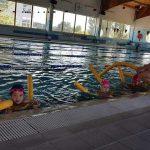 szkoła pływania Bydgoszcz - Hanami